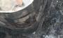 বুদ্ধি খাটিয়ে পাশের ভবনের ছাদে লাফিয়ে  বেঁচে গেলেন ১৫ জন